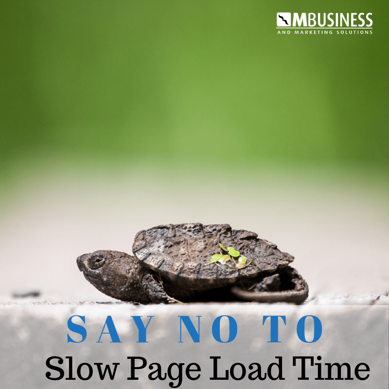 No to slow page load time